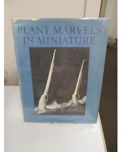 Plant Marvels in Miniature.